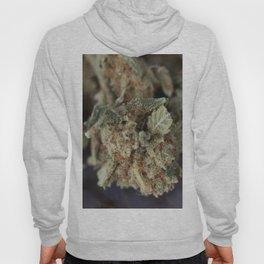 Medical Marijuana Deep Sleep Hoody