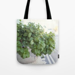 Downtown Flower Pot Tote Bag