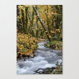Tillamook In The Fall Canvas Print