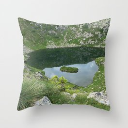 Mountain Spring Puddle Alpine Landscape Throw Pillow