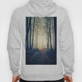 Foggy Forest II Hoody