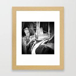 early morning n.3 Framed Art Print