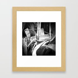 early morning n.3 Framed Art Print
