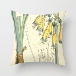 4952 Throw Pillow