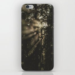 Sunset in the Woods - Nature Photography iPhone Skin