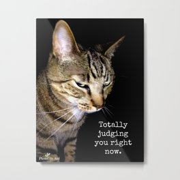 Judging Cat Metal Print