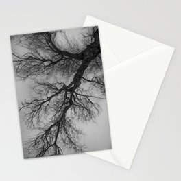 Lungs of the Earth | Nature Photography | Weeping Willow | Black and White | black-and-white | bw Stationery Cards