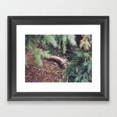 moist Framed Art Print