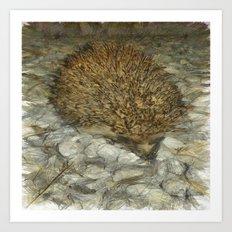Hedgehog Art Print
