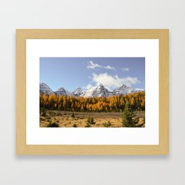 Larch Valley Framed Art Print
