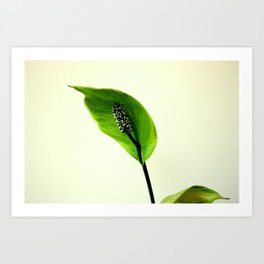 The Green Hoodie Art Print