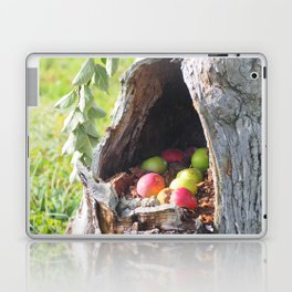 Hidden Apples Laptop & iPad Skin