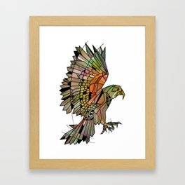 Kea New Zealand Bird Framed Art Print