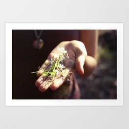 a handful of tiny flowers Art Print