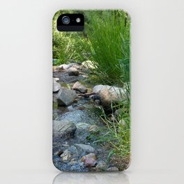 Stream in Mt Lemmon iPhone Case