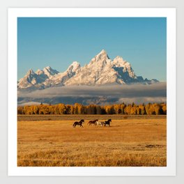 Horses Running in Grand Teton Art Print