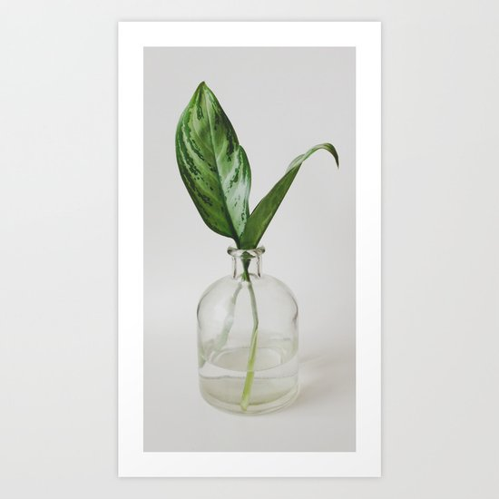 Two Green Leaves in a Glass Vase Art Print