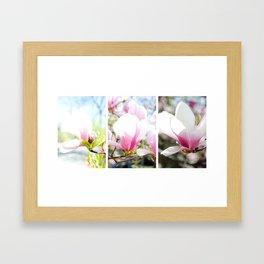 blossom triptych Framed Art Print