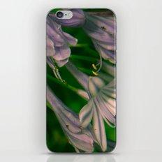 Romantic flowers iPhone & iPod Skin
