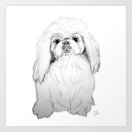 Cartoon Pekingese Dog Art Print