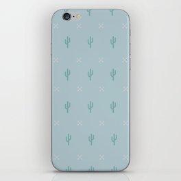 Muted Desert iPhone Skin