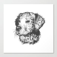 Dog Sketched By Me Canvas Print