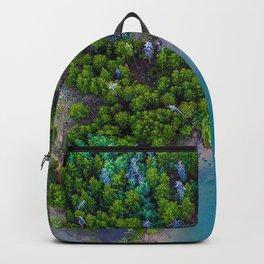 island, ocean, aerial view, paradise, trees Backpack