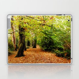 Autumn in the Forest Laptop & iPad Skin