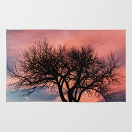 Lonely tree in sunset Rug