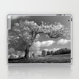 A Tree Blows in the Wind Laptop & iPad Skin
