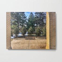 Row of Evergreens Metal Print