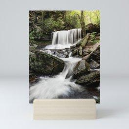 Appalachian Waterfall X - Ricketts Glen Adventure Mini Art Print