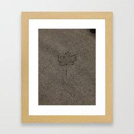 Cemented leaf Framed Art Print