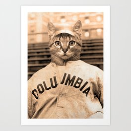 Baseball Kitten #2 Art Print