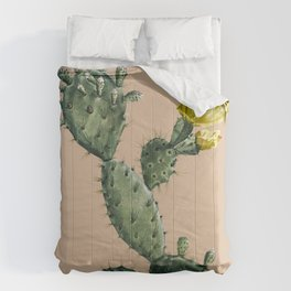 Cactus on Terra Cotta Comforters