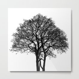 Be Like A Tree Metal Print