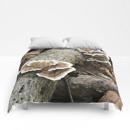 Brackets on a Log Comforters