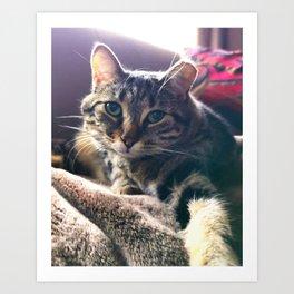 Callie Takes a Selfie Art Print