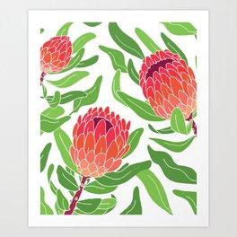 Protea Garden Art Print