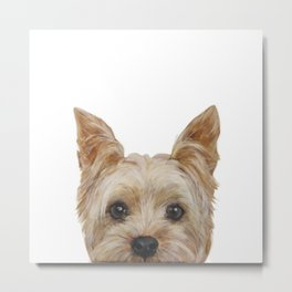 Yorkshire Terrier original painting print Metal Print