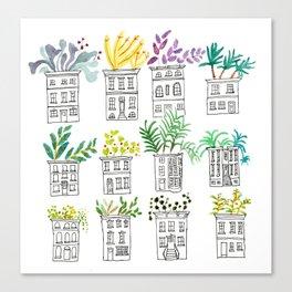 Row House Planters Canvas Print