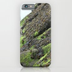 Seaweed iPhone 6s Slim Case