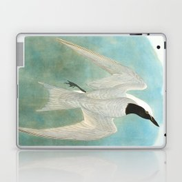 Marsh Tern Laptop & iPad Skin