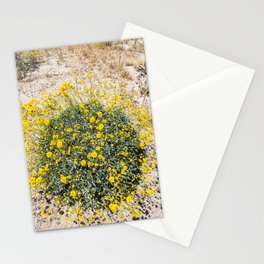 Super Bloom 7290 Paradise Joshua Tree Stationery Cards