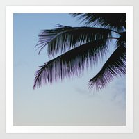 palms Art Prints featuring Palms by Lovely Indeed