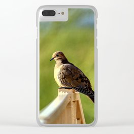 Beautiful Morning Dove Clear iPhone Case