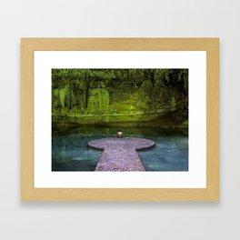 Suytun Cenote Framed Art Print