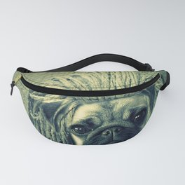Do You Think I Need a Rasta Hat? Fanny Pack