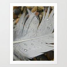 feather macro XIII Art Print
