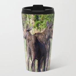 Moose Mates Crossing a Lake Travel Mug